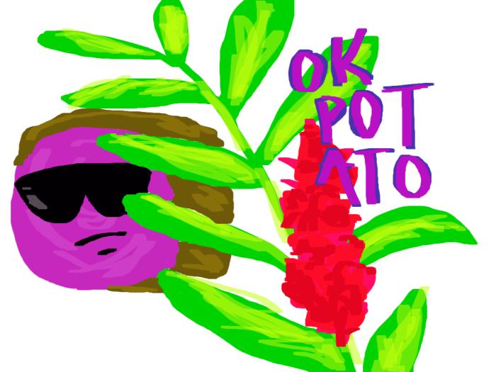 cheri ok-potato drawing